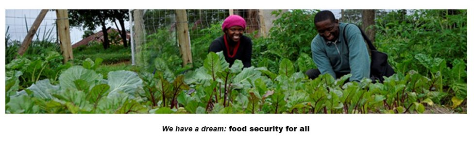 Food Security through Ecological Agriculture